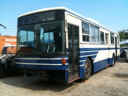 Used Isuzu BUS
